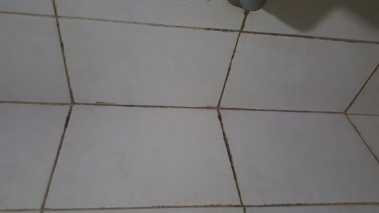 Guntur Hotel : Filthy Bathroom