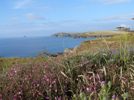 St Issey, UK: Cornish Coastal Path Harlyn