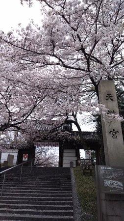 藤井寺市照片