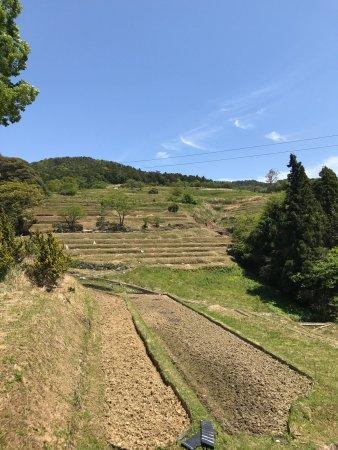 Kurumeki no Tanada
