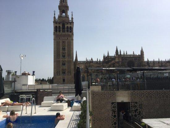 Piscine picture of eme catedral hotel seville tripadvisor - Seville hotel piscine ...