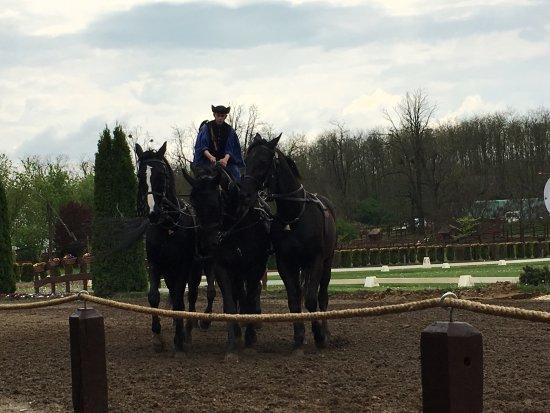 Lazar Equestrian Park: photo0.jpg