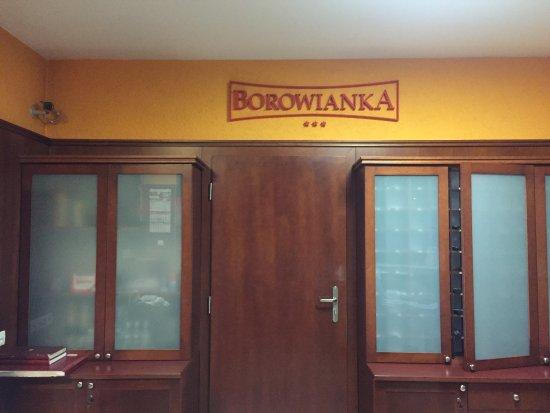 Hotel Restaurant Borowianka