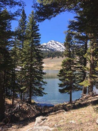 Beautiful Trout Lake nearby