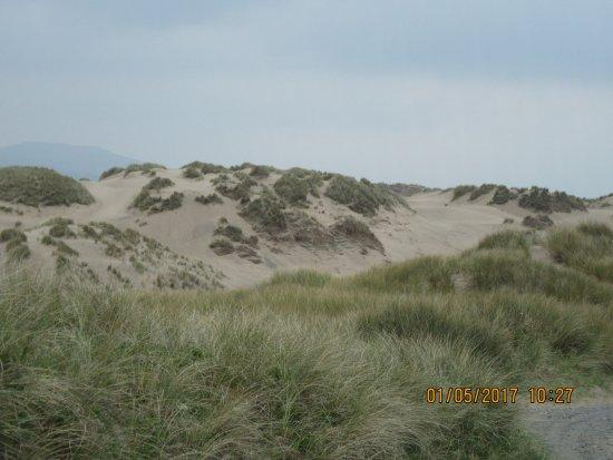 Llanbedr, UK: Sand dunes