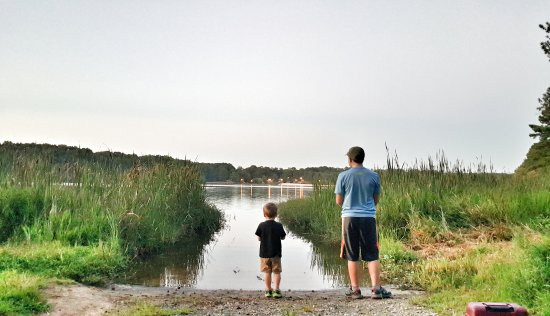 Acworth, GA: Bank fishing spots available across the lake (on other side of beach & playground location)