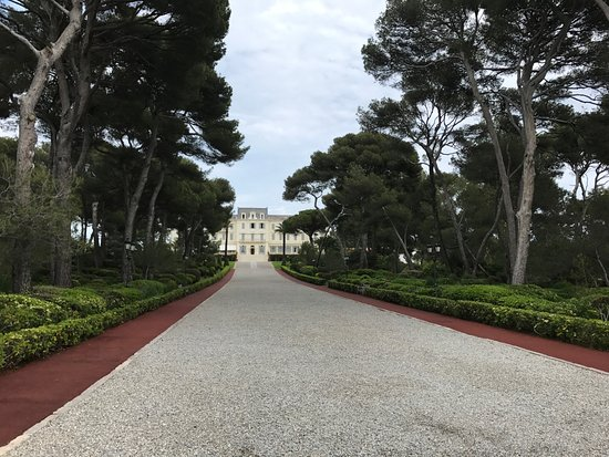 Hotel du Cap Eden-Roc: View looking up at main building from end of walk.