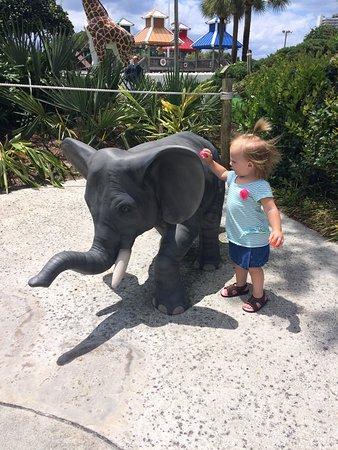 Coconut Creek Family Fun Park: photo0.jpg