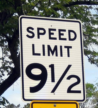 Cape May County Park & Zoo : Eye-Catching Speed Limit