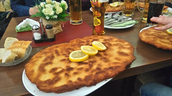 schnitzel seria picture of restaurant louis berlin tripadvisor. Black Bedroom Furniture Sets. Home Design Ideas