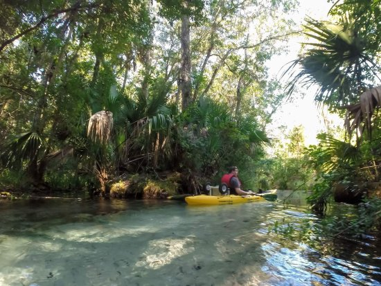 Rainbow River: Relaxing day