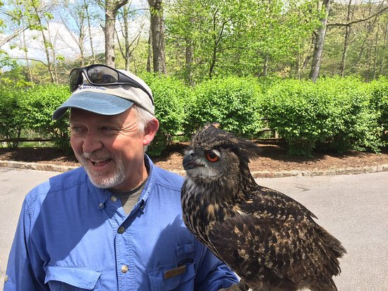 The Greenbrier Falconry: photo0.jpg