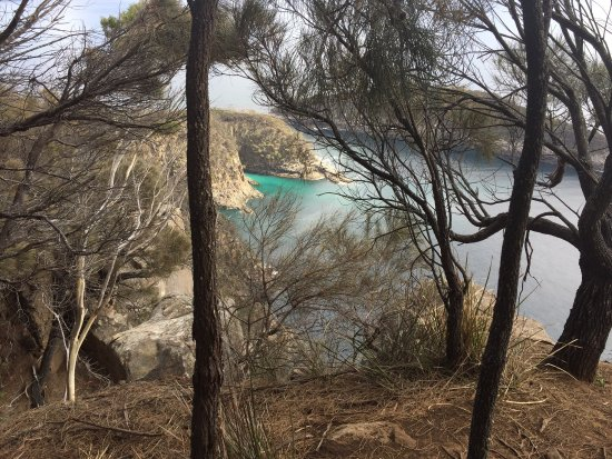 Adventure Bay, ออสเตรเลีย: photo0.jpg