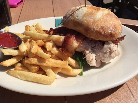 Waconia, MN: Turkey and brie sandwich