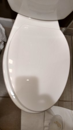 Belle Vernon, PA: Toilet seat is mounted off center, one side is not on toilet.