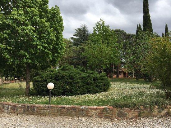 Abbadia di Montepulciano, Italy: Agriturismo il Greppo  Ottimo luogo di vacanza per trascorrere del tempo in totale relax  Cucina