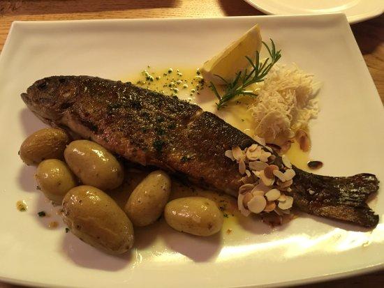 Bellevue: Forel in hotel restaurant zag er prima uit en smaakte ook zo!