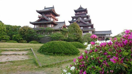 Fushimi Momoyama Castle: DSC_7422_large.jpg