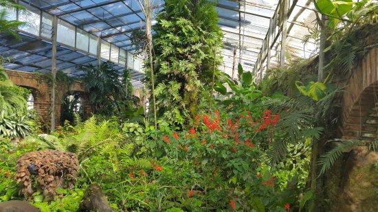 Jardin Botanico Santa Cruz: EL ORQUIDARIO DEL SITIO