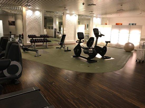 Swissotel Le Plaza Basel: gym (empty early)