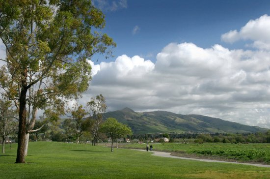 Hampton Inn Fremont : Fremont California Hills Country Club