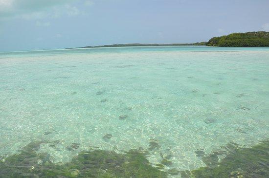 Praia Crasky: Crasky