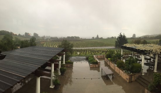 Geyserville, Kalifornien: Lovely - though rainy - view over the vineyard
