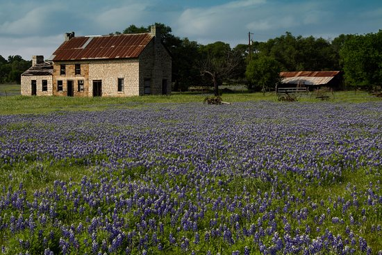 Burnet, TX: The house and outlying buildings