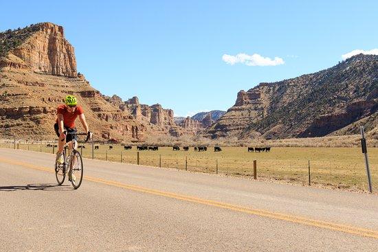Helper, UT: Road Bike tours and Bike Rentals