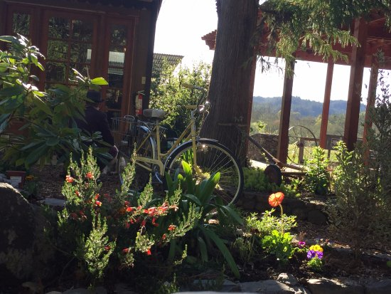Forestville, Californien: Lovely little garden