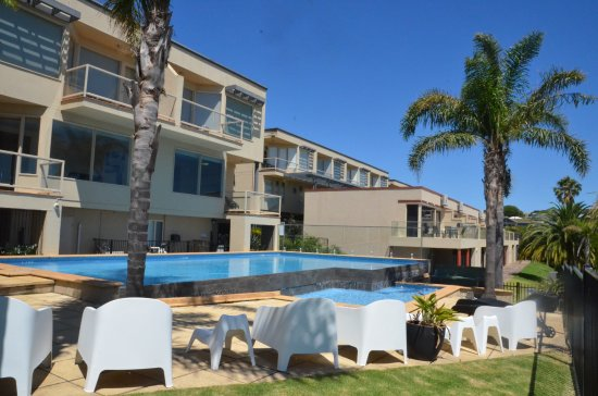 The Bluff Resort Apartments: Outdoor Solar heated swimming pool