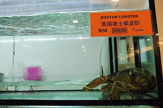 Dao Xiang Chinese Cuisine Restaurant