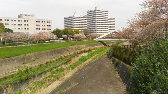 Shinyokohama Ekimae Park