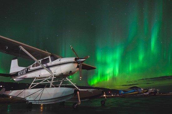 Aviator Training
