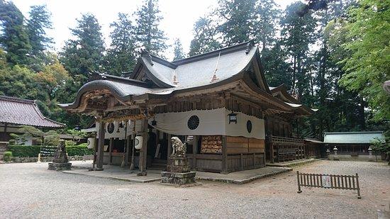 Shiso, Japan: DSC_2430_large.jpg