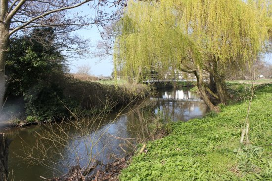 Mold, UK: Spring on the River Alyn