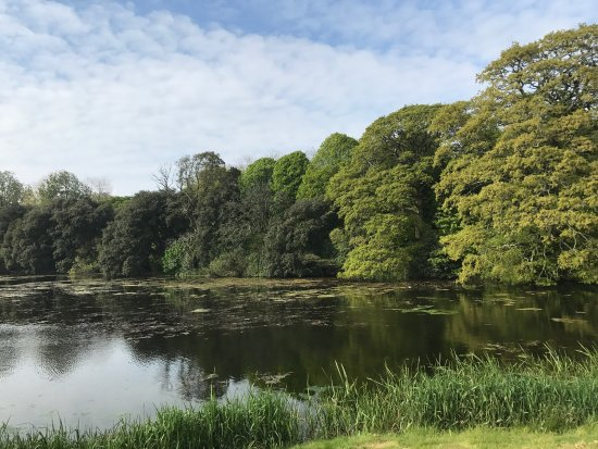 Castlemartyr, Irland: photo5.jpg