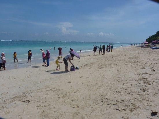 Beach goers photos 12