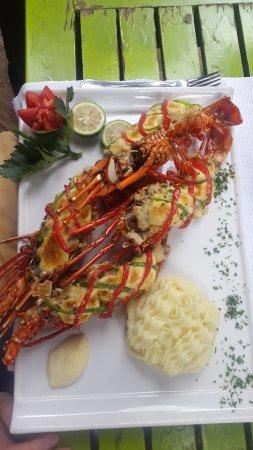 Mediterraneo Ristorante: Gratinated Lobster - to die for!