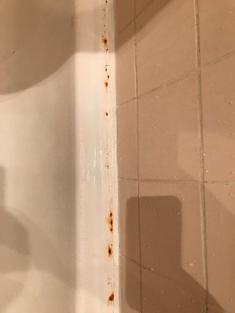 Hotel Sun Palace : 욕실 욕조는 토할 것 같을 정도로 지저분함