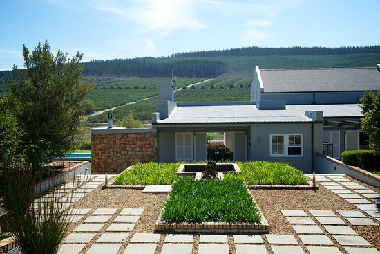 South Hill - The Guesthouse: South Hill Vineyards - Guest House