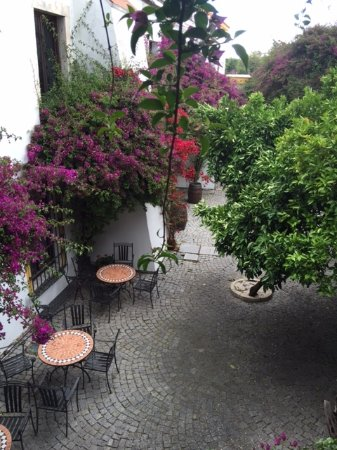 Hotel Sao Joao de Deus: Patio/Jardin