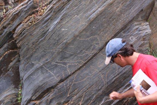 Siega Verde Archaeological Site: El profe explica, y no se pierde ni una leve pista.