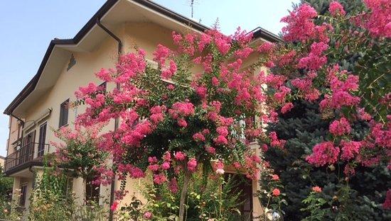 B b giardino fiorito cinisello balsamo italia prezzi for Giardino fiorito