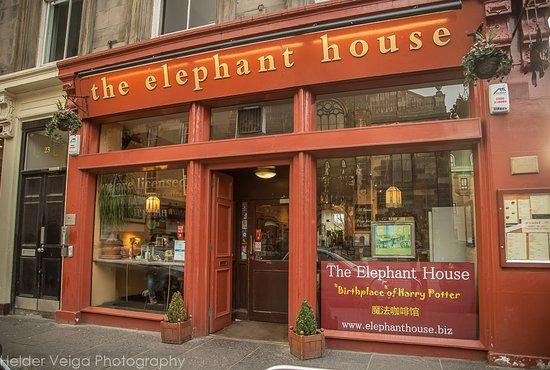 ab30ad1a0eab The Elephant House - Picture of Elephant House