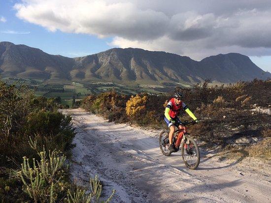 Hermanus, Sudáfrica: Hemel-en-Aarde valley great mtb riding