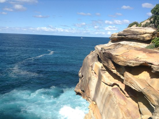 bondi to coogee coastal walk guide