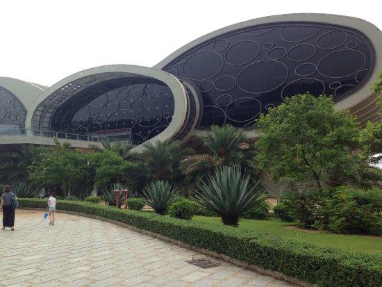 Янцзян, Китай: photo1.jpg