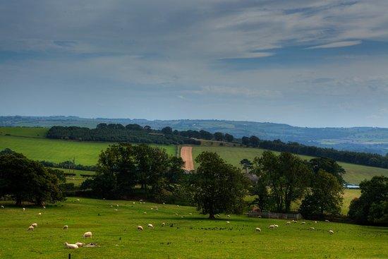 Newton, UK: View across the tyne valley