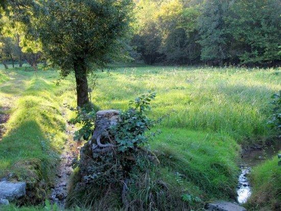 Parco Agricolo Sud Milano: Paesaggio tipico del Parco Sud